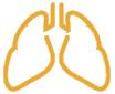 patologias-respiratorias